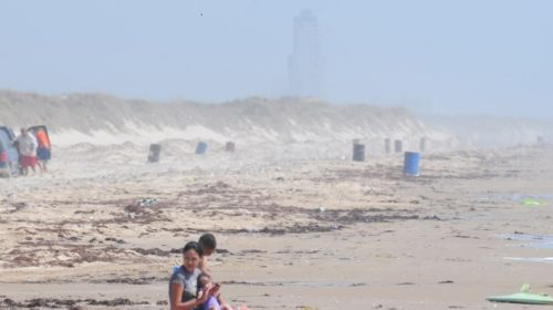 boca-chica-with-tower-for-feature-image-500x280 South Padre Island's Pet Rescuers