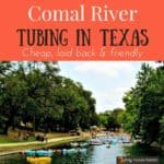 Cooling off in the Comal River